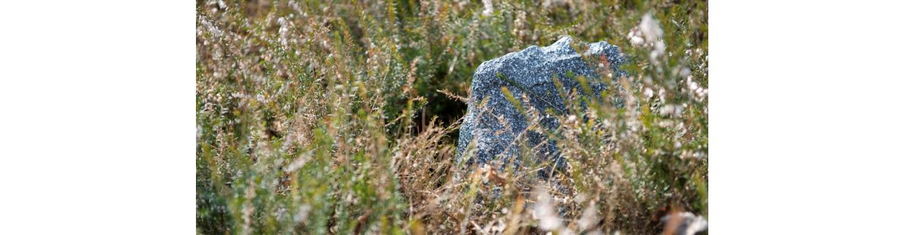 diffusore finta roccia