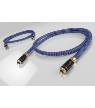 Invictus Signal RCA - 0,5 mt